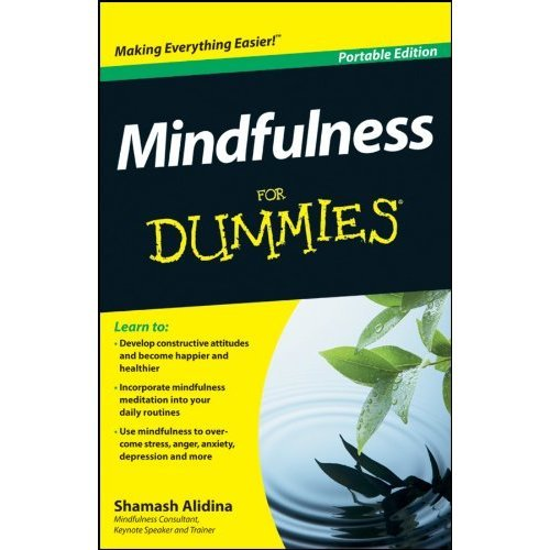 Mindfulness For Dummies, Portable Edition