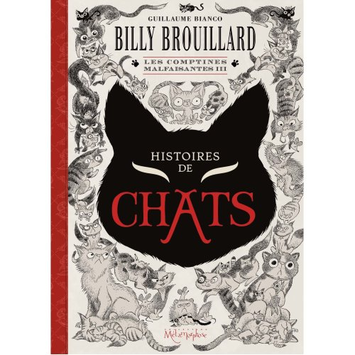 Billy Brouillard Les Comptines Malfaisantes 3 Histoires De Chats