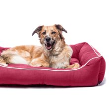 Dog Gone Smart Lounger Bed Berry 94x79cm