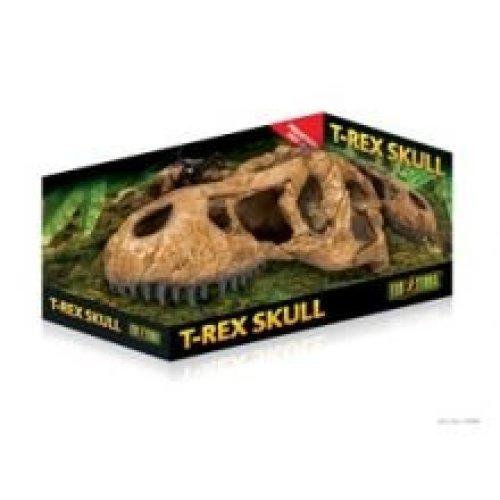 Exo T-rex Skull