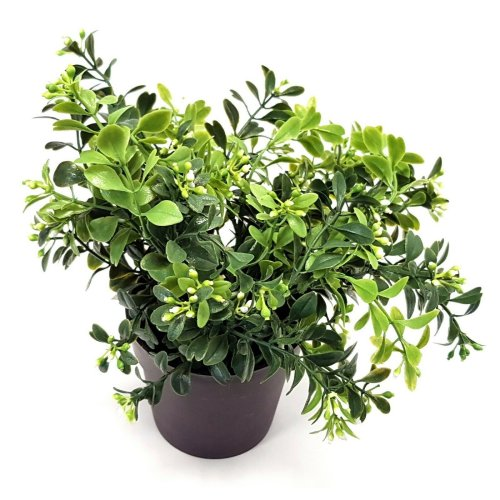 Artificial Bloom Potted Leaf & Bud Plant - 24cm Green Foliage in Black Pot