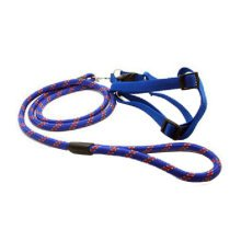 Durable Dog Collar Leash Strap For Puppy Pet,blue/purple