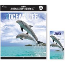 2018 Ocean Life Calendar & Diary Christmas Birthday Gift Square Home Office Fish Dolphins Whales