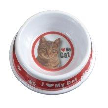 Tabby Cat Bowl