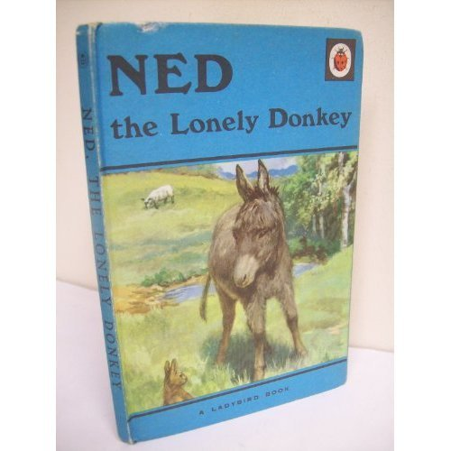 Ned the Lonely Donkey