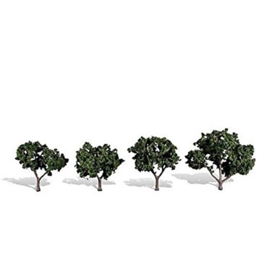 2 - 3 in. 4 Cool Shade Trees