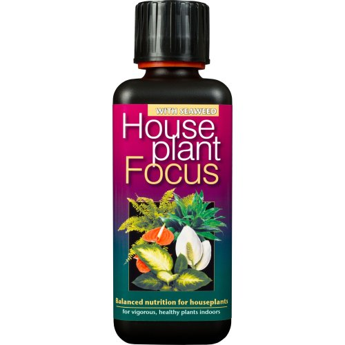 Houseplant Focus Balanced Liquid Concentrated Fertiliser 300ml