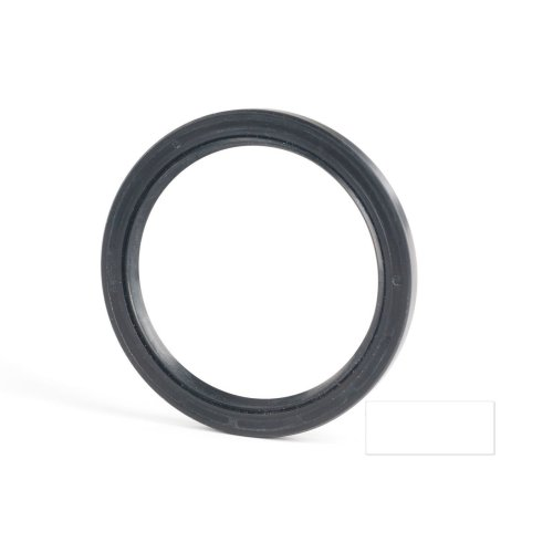 5x16x6mm Oil Seal Nitrile Double Lip With Spring