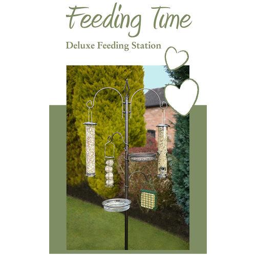Rosewood Feeding Time Deluxe Wild Bird Feeding Station