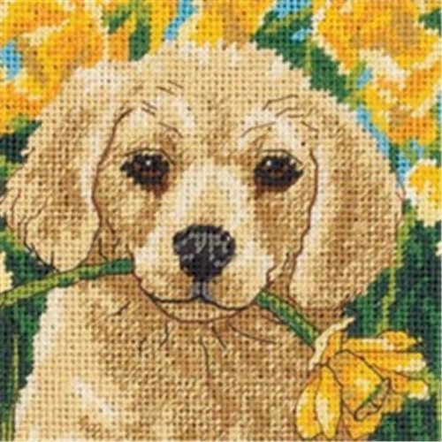 406292 Puppy Mischief Mini Needlepoint Kit-5 in. x 5 in. Stitched In Floss
