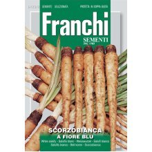 Franchi Seeds of Italy - DBO 123/2 - white Salsify - A Fiore Blu - Seeds