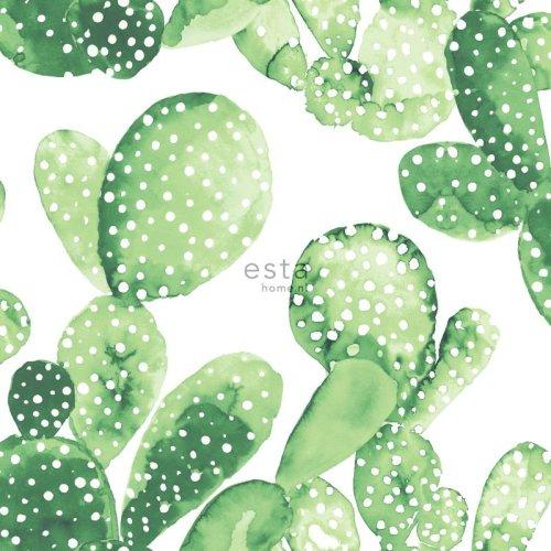 HD non-woven wallpaper watercolor aquarelle painted cacti Tropical jungle green