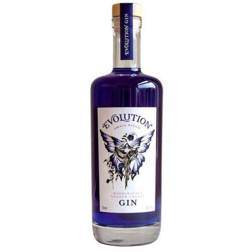 Evolution Colour-Change Gin | 41.3% abv 70cl