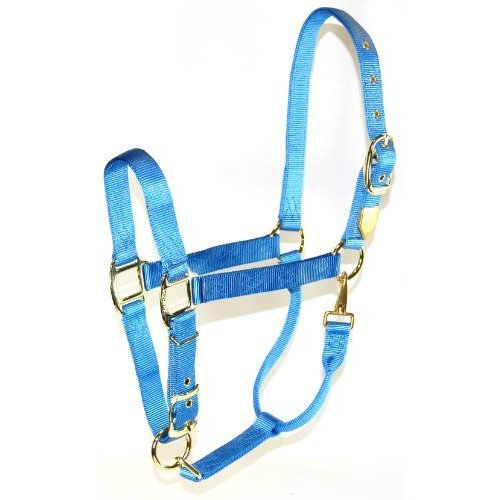 Hamilton, 1 Halter with Adjustable Chin - Berry Blue, 800-1100lbs