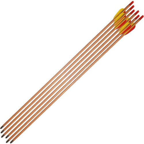 Petron - Archery Target Arrows Wood 30 Inch (pack of 6)