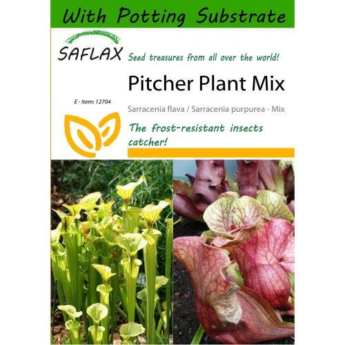 Saflax  - Pitcher Plant Mix - Sarracenia Flava / S. Purpurea - Mix - 10 Seeds - with Potting Substrate for Better Cultivation