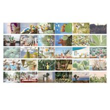 30PCS 1 Set Creative Postcards Artistic Beautiful Postcards, Juvenile Wind